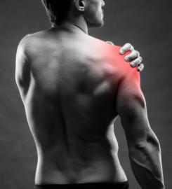 Marc Dinardo   Remedial Massage   Personal Training