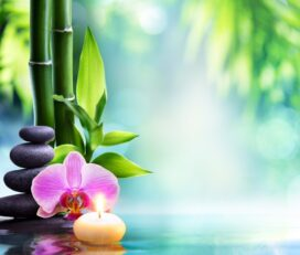Tremarie Therapies